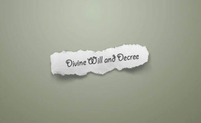 Divine Will and Decree