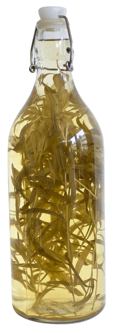 A corked bottle of vinegar with several sprigs of tarragon added to enhance flavor.