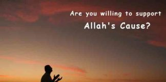 Are you willing to support